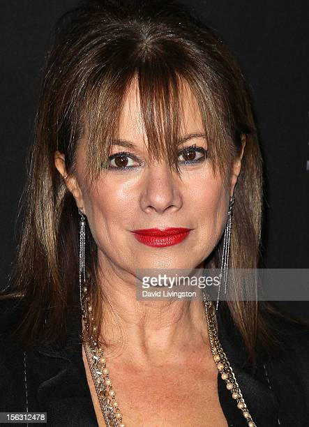Actress Nancy Lee Grahn attends TV Guide Magazine's 2012 Hot List Party at SkyBar at the Mondrian Los Angeles on November 12, 2012 in West Hollywood,...