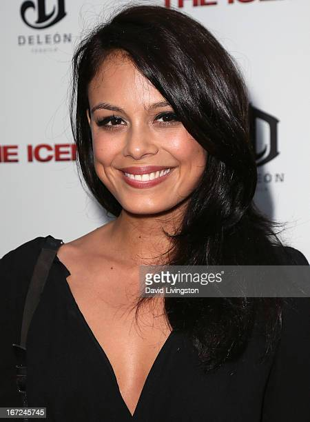 Actress Nathalie Kelley attends the Los Angeles special screening of Millennium Entertainment's 'The Iceman' at ArcLight Hollywood on April 22 2013...