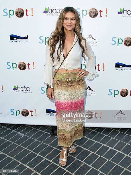 Actress Nia Peeples attends the 3rd Annual Saving SPOT Dog Rescue Benefit at Tiato on October 26 2014 in Santa Monica California