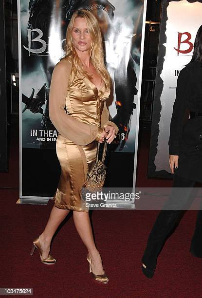 Actress Nicollette Sheridan arrive at the Los Angeles Premiere of Beowulf at Westwood Village on November 5 2007 in Weswood California
