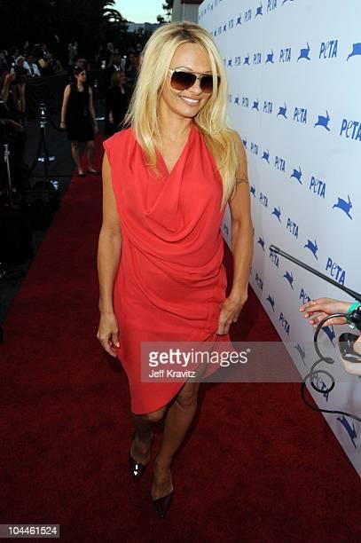 Actress Pamela Anderson arrives at PETA's 30th Anniversary Gala and Humanitarian Awards at The Hollywood Palladium on September 25 2010 in Los...