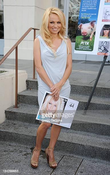 actress pamela sue anderson nude photos