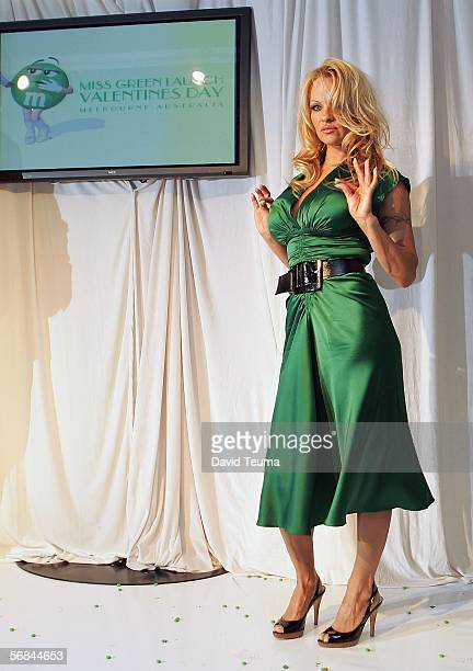 Actress Pamela Anderson poses during the Miss Green Valentines Day party at Carousel on February 14 2006 in Melbourne Australia