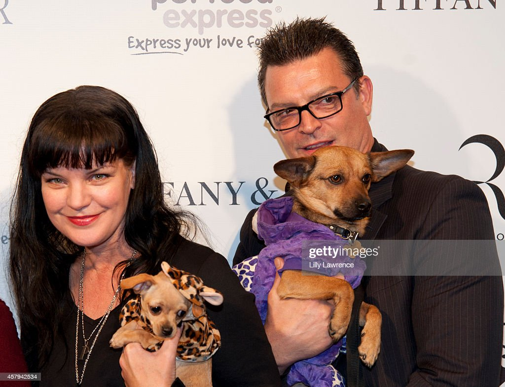 Actress Pauley Perrette (L) and Thomas Arklie attends the Amanda Foundation's 2014 Bow Wow Beverly Hills Halloween Rodeo Drive 'Night Of The Living Dog!' Event at Via Rodeo at Two Rodeo Drive on October 26, 2014 in Beverly Hills, California.