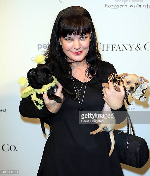 Actress Pauley Perrette attends the Amanda Foundation's 2014 Bow Wow Beverly Hills Halloween Rodeo Drive 'Night of the Living Dog' event at Via Rodeo...