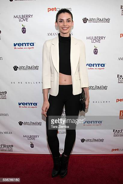 Actress Rachele Schank attends the 2nd Annual Art for Animals Fundraiser Evening For Eastwood Ranch Foundation at De Re Gallery on June 4 2016 in...