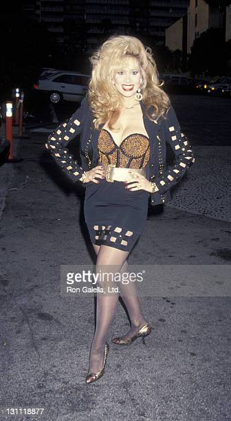 Actress Rhonda Shear attends the book party for Jackie Collins American Star on April 15 1993 at Spago Restaurant in West Hollywood California