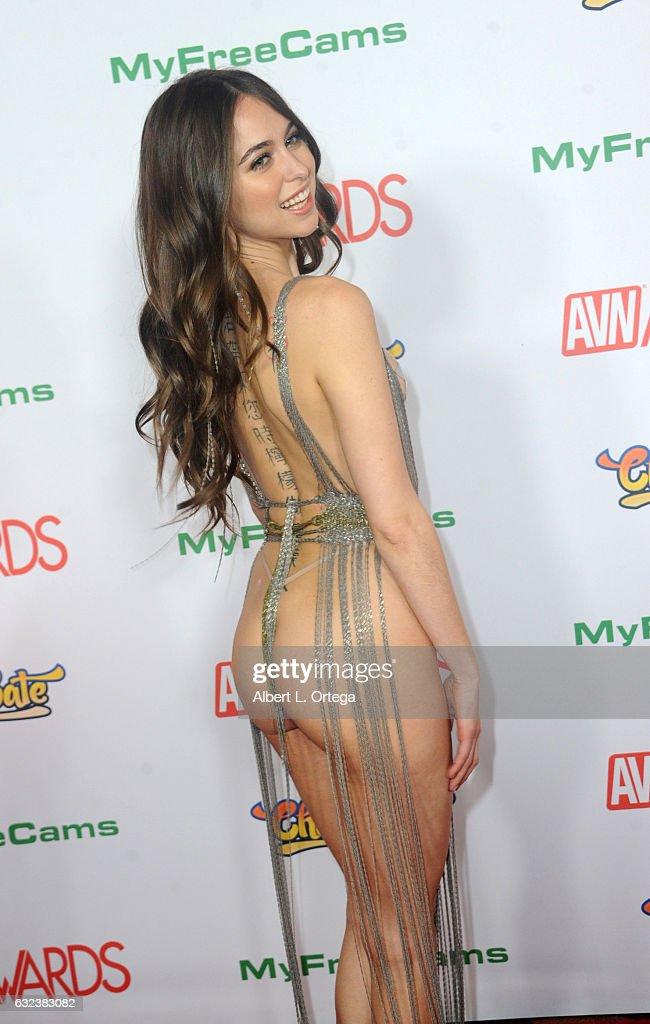 Adult Video News Awards Arrivals News Photo