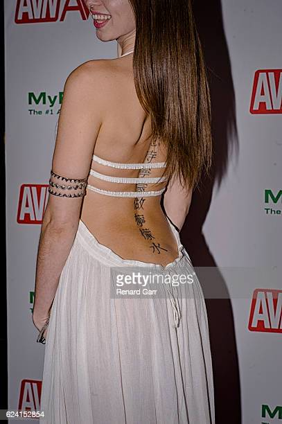 Actress Riley Reid arrives for the 2017 AVN Nomination Partyat Avalon at Avalon on November 17 2016 in Hollywood California