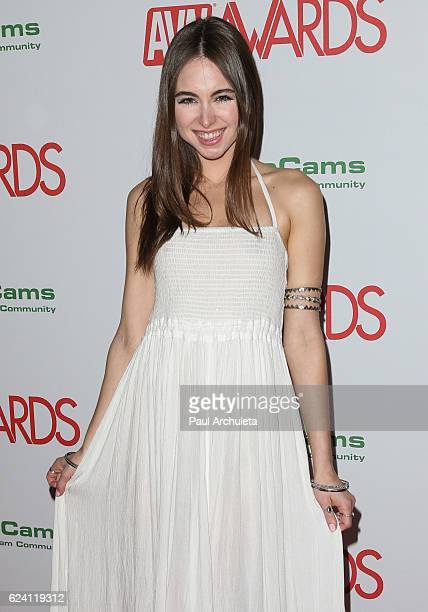 Actress Riley Reid attends the 2017 AVN Awards nomination party at Avalon on November 17 2016 in Hollywood California