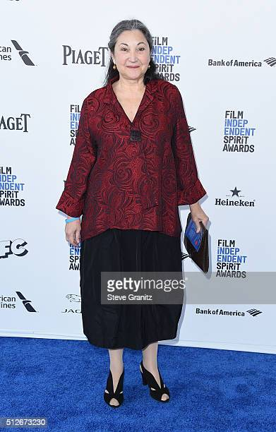 Actress Robin Bartlett attends the 2016 Film Independent Spirit Awards on February 27 2016 in Santa Monica California