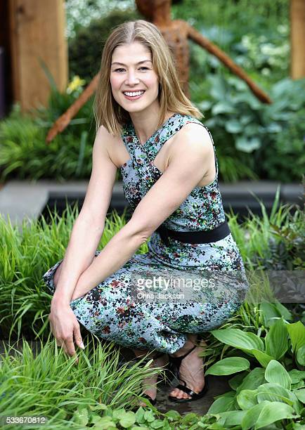 Actress Rosamund Pike at the Morgan Stanley Garden for Great Ormond Street Hospital at the Rhododendron Society stand at RHS Chelsea Flower Show on...