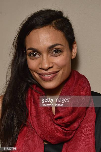 Actress Rosario Dawson attends VDay One Billion Rising's RISE NYC at the Hammerstein Ballroom on February 14 2013 in New York City