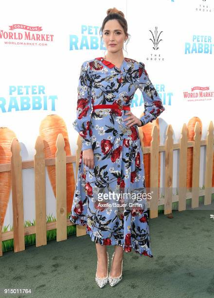 Actress Rose Byrne attends the Los Angeles Premiere of 'Peter Rabbit' at The Grove on February 3 2018 in Los Angeles California