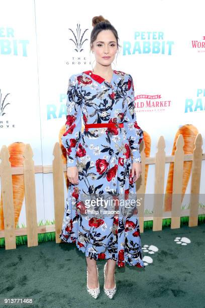 Actress Rose Byrne attends the premiere of 'Peter Rabbit' sponsored by Cost Plus World Market at The Grove on February 3 2018 in Los Angeles...