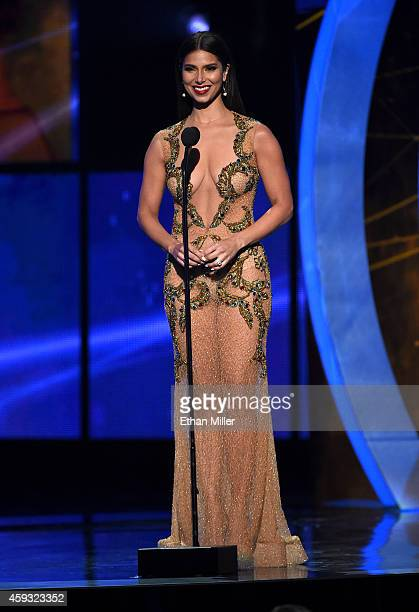 Actress Roselyn Sanchez speaks onstage during the 15th Annual Latin GRAMMY Awards at the MGM Grand Garden Arena on November 20 2014 in Las Vegas...