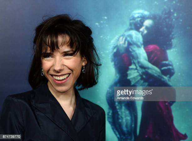 Actress Sally Hawkins arrives at the premiere of Fox Searchlight Pictures' The Shape Of Water at the Academy Of Motion Picture Arts And Sciences on...