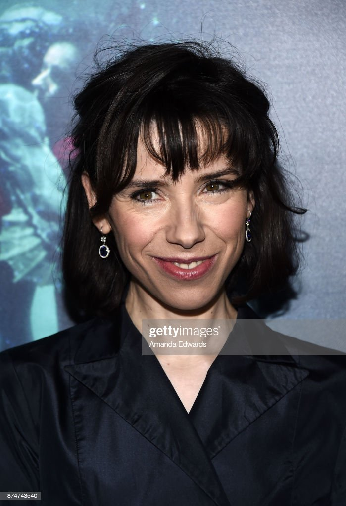 Actress Sally Hawkins arrives at the premiere of Fox Searchlight Pictures' 'The Shape Of Water' at the Academy Of Motion Picture Arts And Sciences on November 15, 2017 in Los Angeles, California.