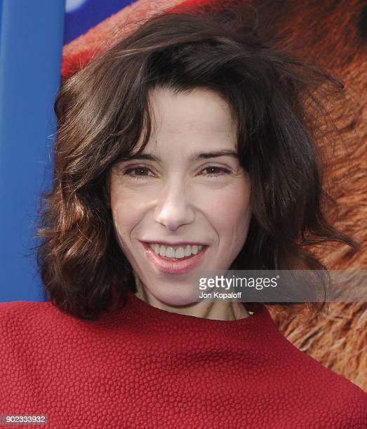 Actress Sally Hawkins attends the Los Angeles Premiere 'Paddington 2' at Regency Village Theatre on January 6 2018 in Westwood California
