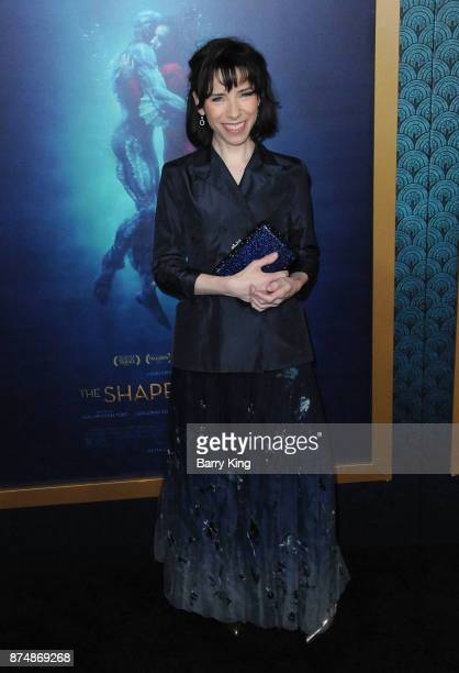 Actress Sally Hawkins attends the premiere of Fox Searchlight Pictures' 'The Shape Of Water' at Academy Of Motion Picture Arts And Sciences on...