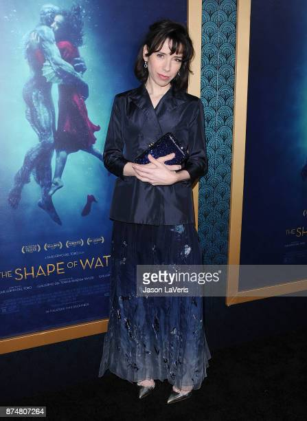 Actress Sally Hawkins attends the premiere of 'The Shape of Water' at the Academy of Motion Picture Arts and Sciences on November 15 2017 in Los...