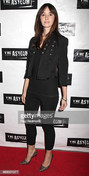 Actress Sara Malakul Lane attends Los Angeles Premiere of Mega Shark Vs Mecha Shark at Downtown Independent Theater on January 24 2014 in Los Angeles...