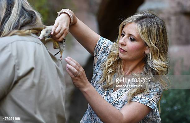 Actress Sarah Michelle Gellar attends The Greater Los Angeles Zoo Association's 45th Annual Beastly Ball at the Los Angeles Zoo on June 20 2015 in...