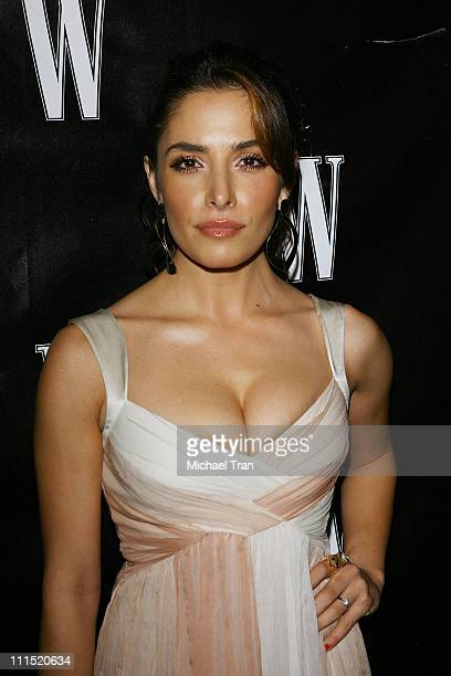 Actress Sarah Shahi arrives at W Magazine's Hollywood Affair party held at the Terrace Room in the Sunset Tower hotel on February 20 2008 in West...