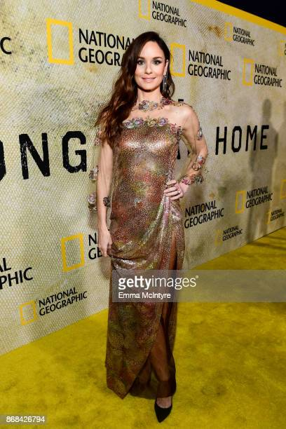 Actress Sarah Wayne Callies attends the premiere of National Geographic's 'The Long Road Home' at Royce Hall on October 30 2017 in Los Angeles...