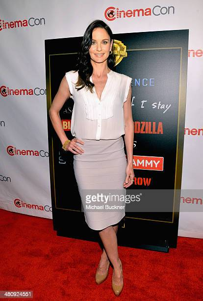 """Actress Sarah Wayne Callies attends Warner Bros Pictures' """"The Big Picture"""" an Exclusive Presentation Highlighting the Summer of 2014 and Beyond..."""