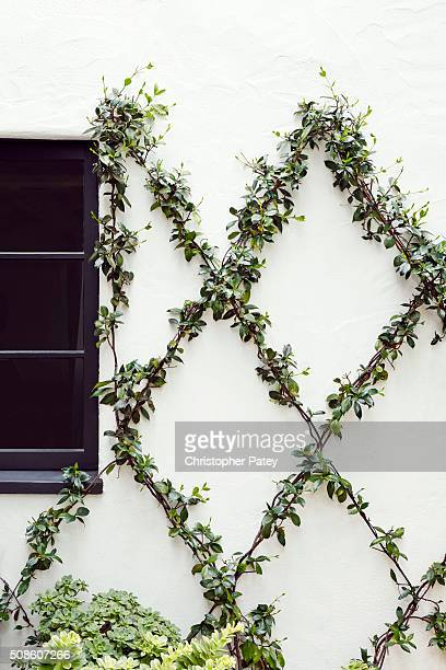 Actress Sasha Alexander's home is photographed for Domaine Home on March 11 2015 in Los Angeles California Published Image