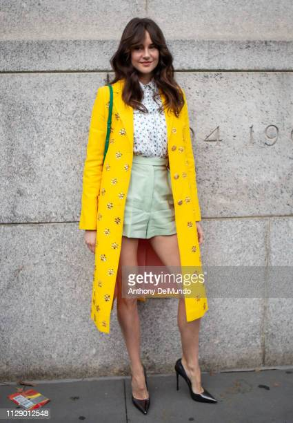 Actress Shailene Woodley attends Carolina Herrera fall 2019 runway show during New York Fashion Week held at New York Historical Society 170 Central...