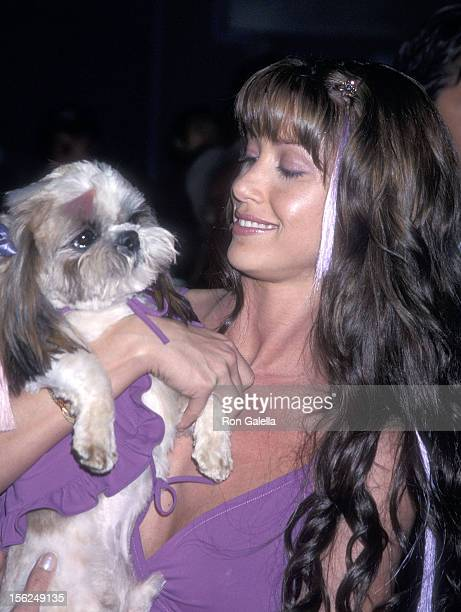 Actress Shannon Elizabeth and dog Ewok attend the Tomcats Universal City Premiere on March 28 2001 at the Universal City Walk 18 Theatres in...