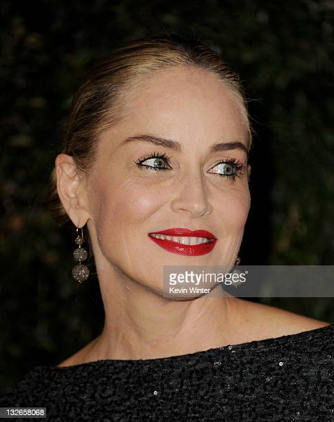Actress Sharon Stone arrives at the Academy of Motion Picture Arts and Sciences' 3rd Annual Governors Awards at the Hollywood Highland Grand Ballroom...