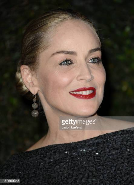 Actress Sharon Stone attends the Academy of Motion Picture Arts and Sciences' 3rd annual Governors Awards at Hollywood Highland Center on November 12...