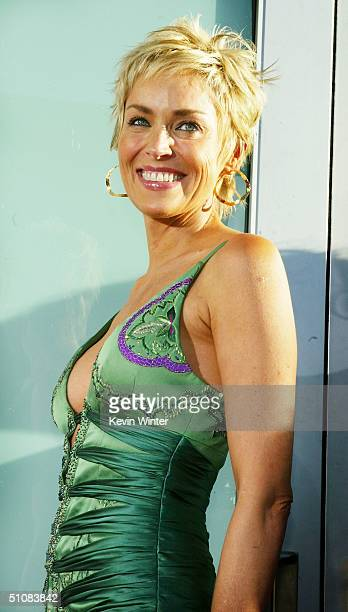 Sharon Stone Catwoman Pictures And Photos Getty Images