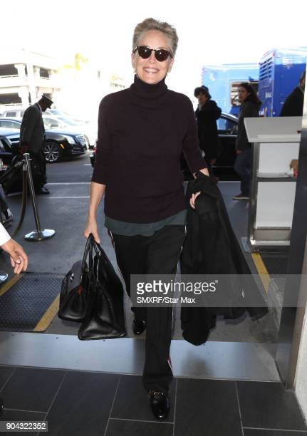 Actress Sharon Stone is seen on January 12 2018 in Los Angeles California