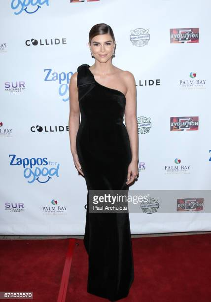 Actress Shiva Safai attends the 2nd annual Vanderpump Dog Foundation Gala at Taglyan Cultural Complex on November 9 2017 in Hollywood California