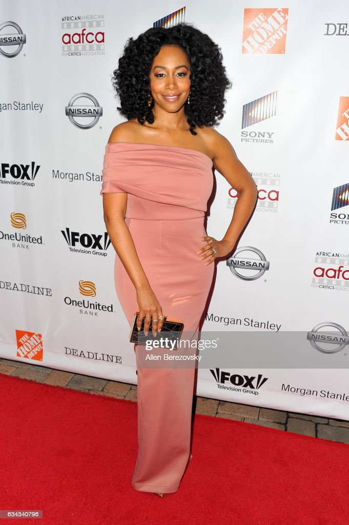 8th Annual AAFCA Awards - Arrivals
