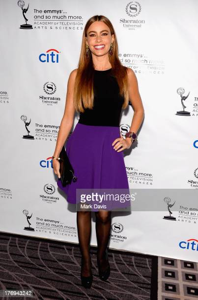 Actress Sofía Vergara arrives at the Academy of Television Arts Sciences' Performers Peer Group cocktail reception to celebrate the 65th Primetime...
