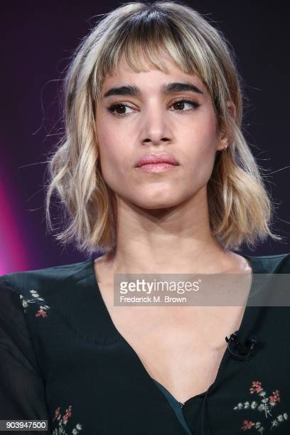 Actress Sofia Boutella of the television show Fahrenheit 451 speaks onstage during the HBO portion of the 2018 Winter Television Critics Association...