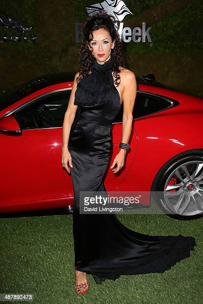 Actress Sofia Milos attends A Villainous Affair presented by Jaguar North America and BritWeek at the London West Hollywood on May 2 2014 in West...