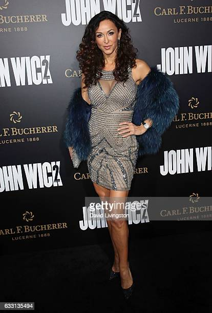 Actress Sofia Milos attends the premiere of Summit Entertainment's John Wick Chapter Two at ArcLight Hollywood on January 30 2017 in Hollywood...