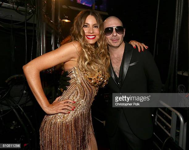 Actress Sofia Vergara and rapper Pitbull attend The 58th GRAMMY Awards at Staples Center on February 15 2016 in Los Angeles California