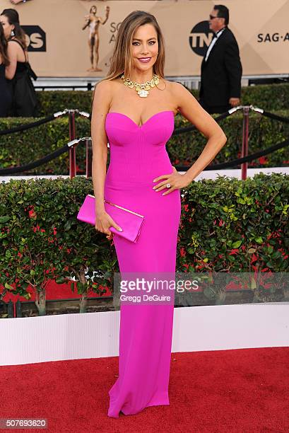 Actress Sofia Vergara arrives at the 22nd Annual Screen Actors Guild Awards at The Shrine Auditorium on January 30 2016 in Los Angeles California