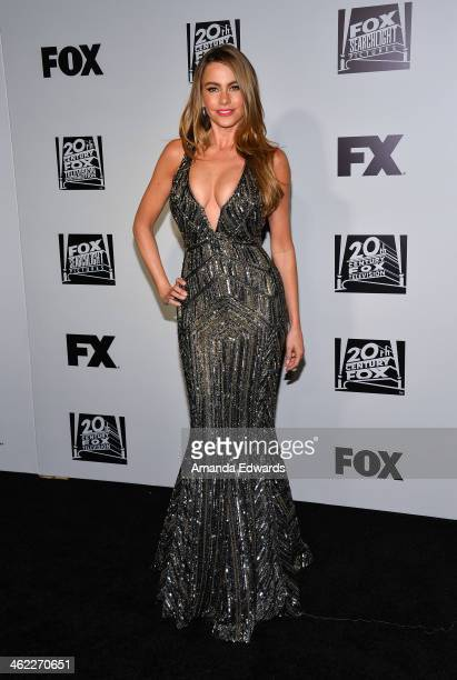 Actress Sofia Vergara arrives at the FOX/FX Golden Globe Party at the FOX Pavilion at the Golden Globes on January 12, 2014 in Beverly Hills,...