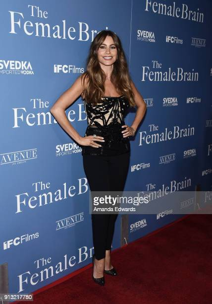 Actress Sofia Vergara arrives at the premiere of IFC Films' 'The Female Brain' at the ArcLight Hollywood on February 1 2018 in Hollywood California