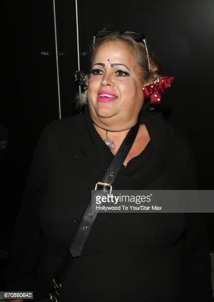 Actress Sonia Pizarro is seen on April 19, 2017 in Los Angeles, California.