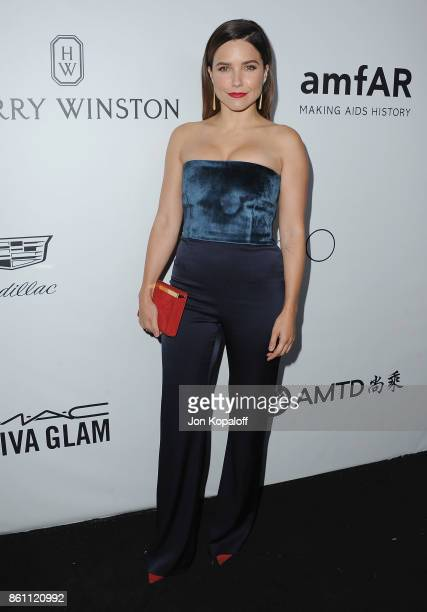 Actress Sophia Bush arrives at amfAR Los Angeles 2017 at Ron Burkleâs Green Acres Estate on October 13 2017 in Beverly Hills Californi