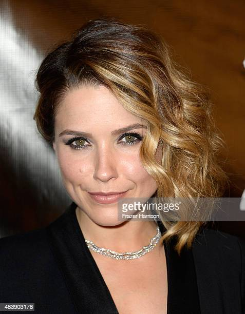 Actress Sophia Bush attends HFPA Annual Grants Banquet at the Beverly Wilshire Four Seasons Hotel on August 13 2015 in Beverly Hills California